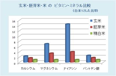 米と玄米、胚芽米の栄養価比較,アトピーを治す食事療法